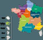Les Réseaux Régionaux Multi-Acteurs (RRMA) en France